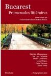 Essai, anthologie, Roumanie, Cécile Folschweiller, Andreia Roman, éditions Non Lieu, Jean-Pierre Longre